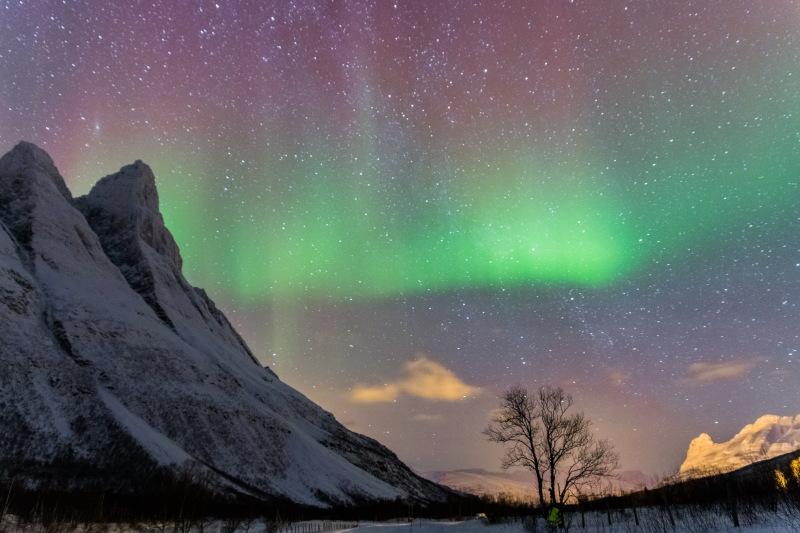 Guide Tromso DamienLB aurore boreale guide gunnar